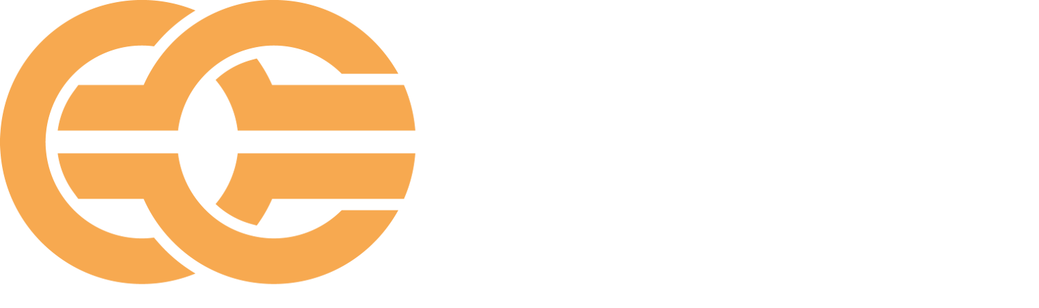 Future Manager Consulting